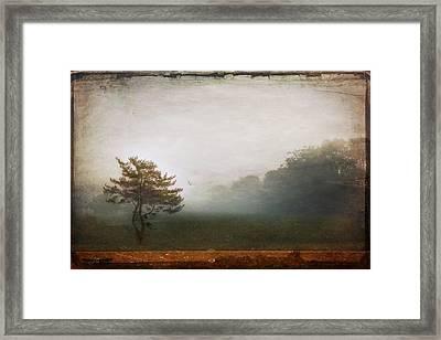 Season Of Mists Framed Print by Evelina Kremsdorf