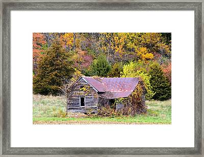 Seasoned With Age In Fall Framed Print