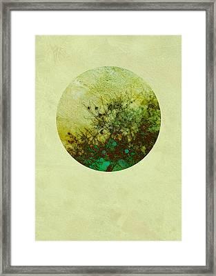 Seasons Of My Garden Framed Print by Ann Powell