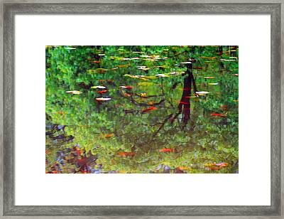 Seasons Reflect Framed Print by Karol Livote