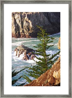 Secluded Big Sur Cove 2 Framed Print by Jeff Lowe