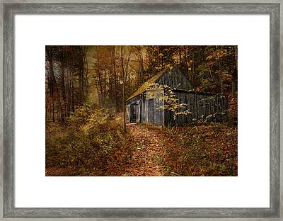 Framed Print featuring the photograph Secluded by Robin-Lee Vieira