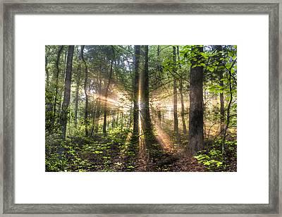 Second Coming Framed Print by Debra and Dave Vanderlaan