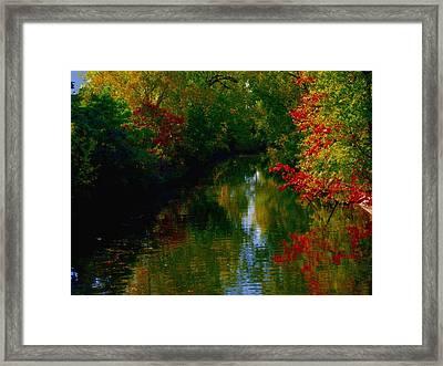 Secret Horse Creek Framed Print by Contemporary Luxury Fine Art