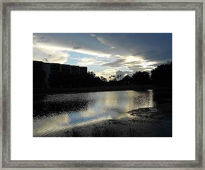 Seduction Framed Print by Sheila Silverstein