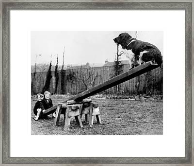 See-saw Dog Framed Print by Fox Photos