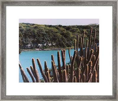 Framed Print featuring the photograph See Side by Tanya Tanski