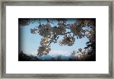 See The Cascades Framed Print by Lee Yang