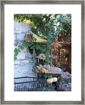 Seeds For Sale Framed Print by Sandy Collier