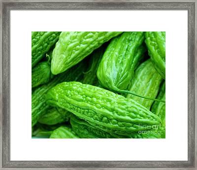 Seeing Green Framed Print by Lisa Billingsley