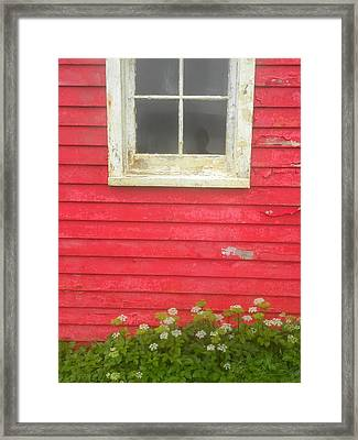 Seeing Red Framed Print by Peggy  McDonald