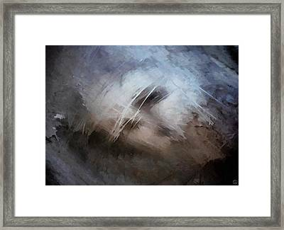 Seeking Rest Framed Print by Gun Legler