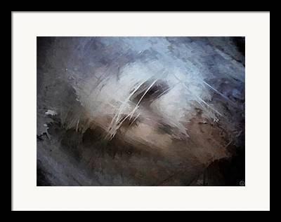 Seeking Rest Framed Prints