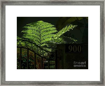 Selby Fern Framed Print