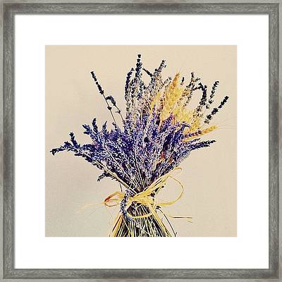 Semplicity. Or The Art Of Deep Breath Framed Print