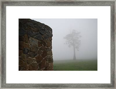 Sentinel In The Mist Framed Print by Sarah King
