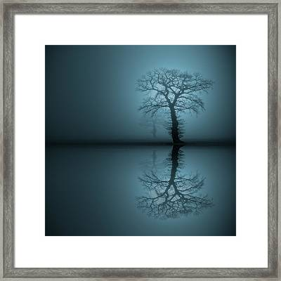 Sentinels 2 Framed Print by Andy Astbury
