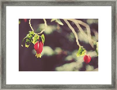 Separate Lives Framed Print by Laurie Search