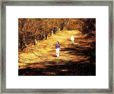 Separated Framed Print by Ioana Geacar