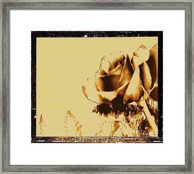 Sepia Rose Framed Print