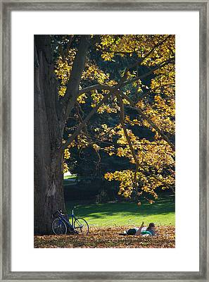 Framed Print featuring the photograph September Dreams by Joseph Yarbrough