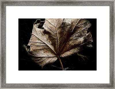 September Framed Print by Odd Jeppesen