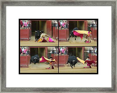Sequence Of A Bullfight Action Framed Print