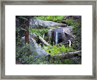 Sequoia Waterfall Framed Print by Anthony Citro
