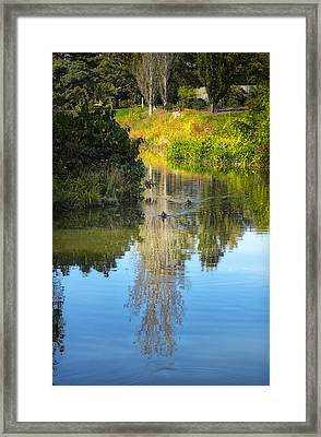 Serene Reflection Framed Print