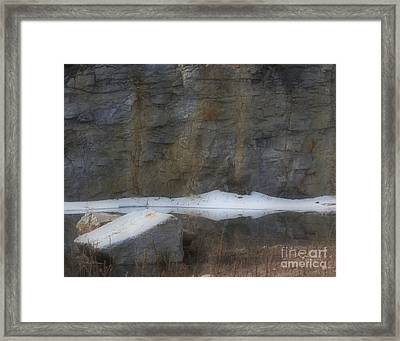 Serene Reflections In Spring Framed Print