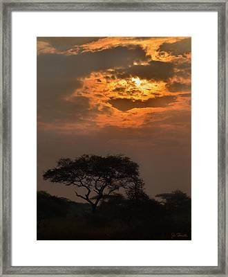 Serengeti Sun No. 1 Framed Print by Joe Bonita