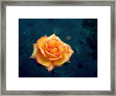 Serenity Framed Print by Andrew Bailey