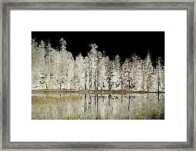 Serenity Framed Print by Bonnie Bruno