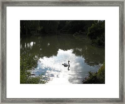 Serenity Framed Print by Corinne Elizabeth Cowherd