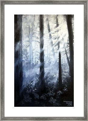 Serenity Framed Print by Jamil Alkhoury