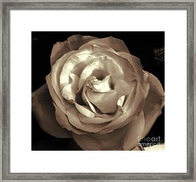 Serenity Framed Print by Marsha Heiken
