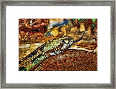 Serpent's Forked Tongue Framed Print