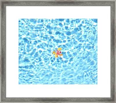 Set Adrift 4 Framed Print