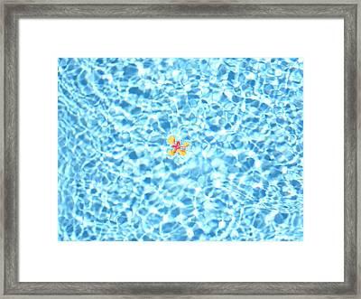 Set Adrift 5 Framed Print