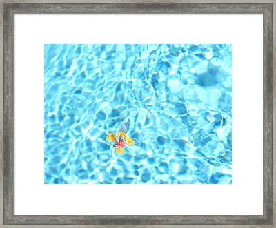 Set Adrift Framed Print