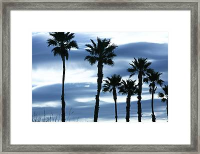 Seven Palms Framed Print