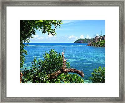 Seychelles Framed Print by Jenny Senra Pampin
