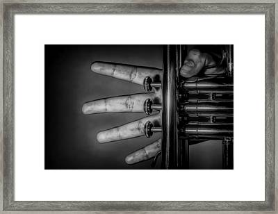 Framed Print featuring the photograph Sforzando by Tom Gort