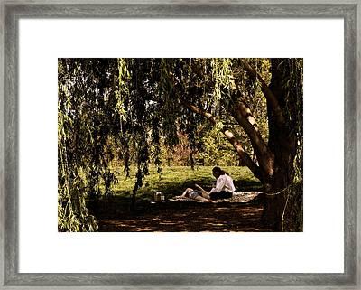 Shade Framed Print by Jason Adolphson