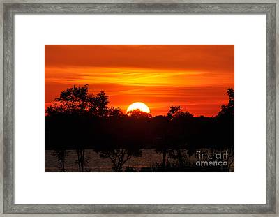 Shades Of Orange Framed Print by Suzanne Handel