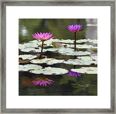 Shades Of Purple  Framed Print by Suzanne Gaff