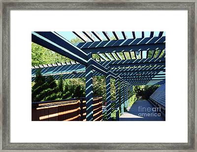 Shadow Composition Framed Print