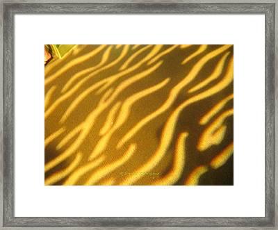 Shadow Light Framed Print by Sonali Gangane