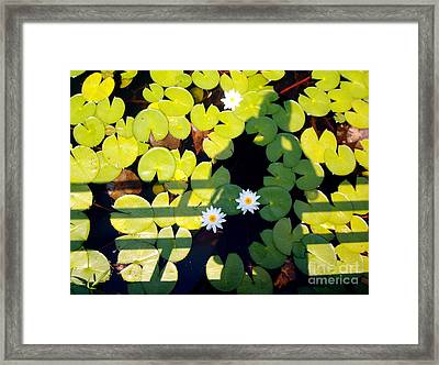 Framed Print featuring the painting Shadow Lilies by Gretchen Allen