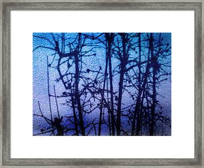 Shadow Limbs Framed Print